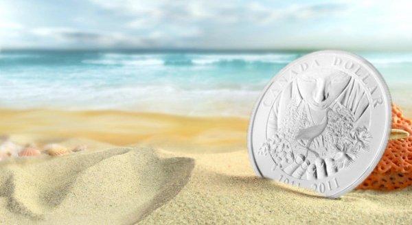 Nhặt một đồng tiền lại trở thành giàu có và đạo lý kinh doanh sâu sắc