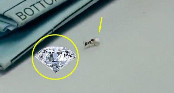 """Video: """"Đạo chích"""" tí hon cố gắng đánh cắp kim cương quý giá trong cửa hàng"""