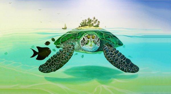 Sự tích con rùa Philippines: Vì sao rùa lại luôn đem theo chiếc mai bên mình?