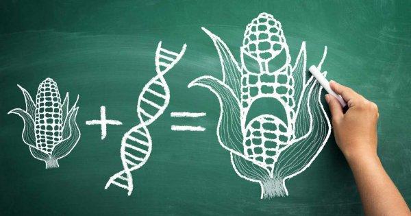 """Monsanto đang tìm cách kiếm tiền trên thị trường hữu cơ với thuật ngữ """"bio"""""""