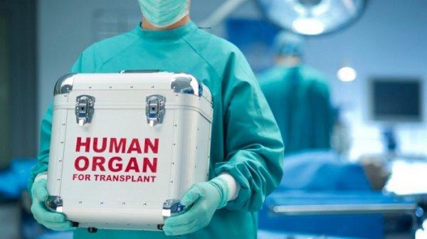 Ủy ban Nhân quyền Anh kết luận về tội ác thu hoạch nội tạng