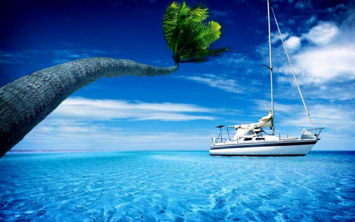 Giải mã điềm báo của những giấc mơ thấy nước.3