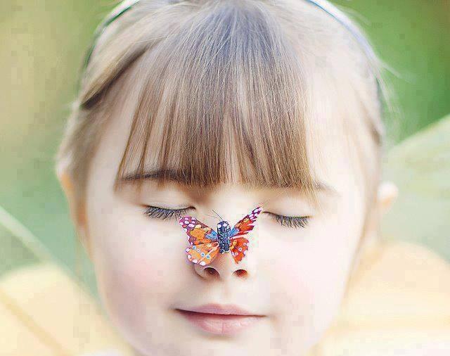 Hoa thơm ắt bướm tự đến đậu. (Ảnh: Internet)