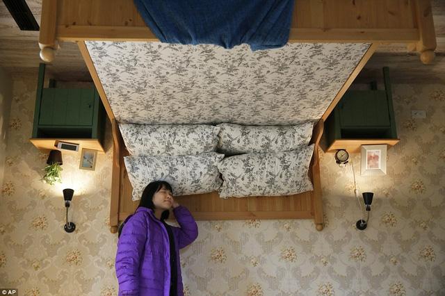 Giường ngủ ấm áp treo lơ lửng trên cao.