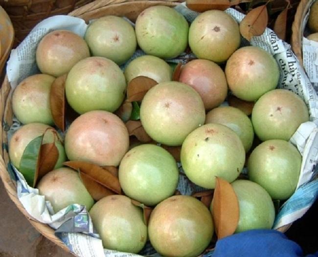 6 loại quả thuần Việt, không nhập khẩu từ Trung Quốc. 2
