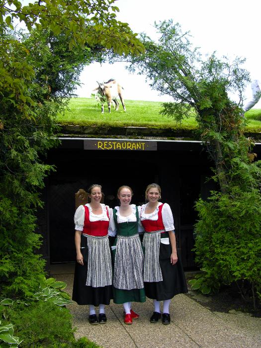 122254531_kozuy_na_kruyshe_restoran_Al_Johnsons_Swedish_Restaurant_and_Butik_8