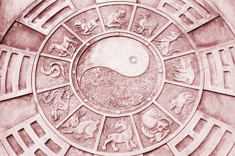 Mỗi năm của vòng hoàng đạo Trung Quốc được đại diện bởi một con động vật khác nhau. (Ảnh: Internet)