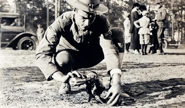 Những con vật nổi tiếng trong quân đội Mỹ Thế chiến I.1