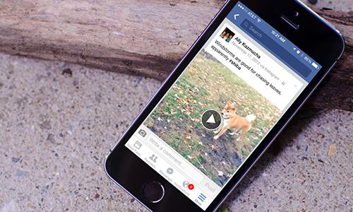Facebook trên máy tính và di động đang áp dụng chế độ tự động phát video.