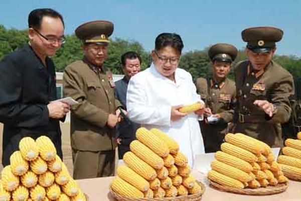 Ông Kim Jong-un trong chuyến thăm đến khu trang trại.