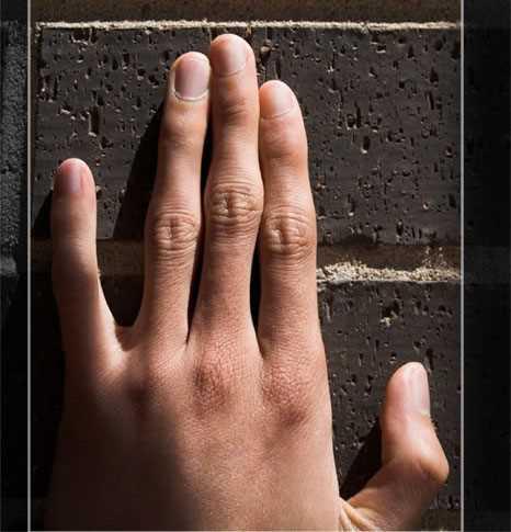 Độ dài ngón áp út so với ngón trỏ tiết lộ tính cách con người
