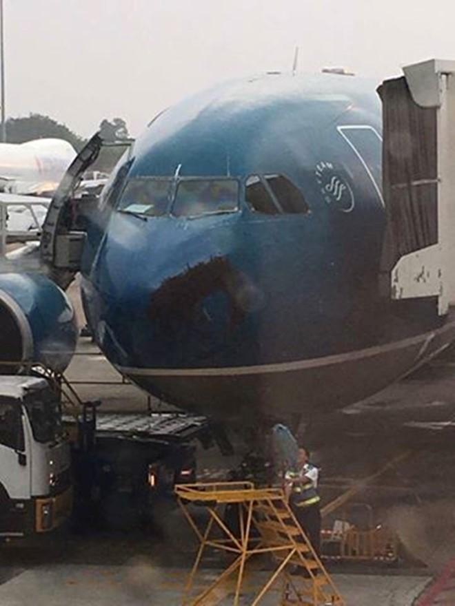 Nhân viên mặt đất tại sân bay tìm cách xua đuổi đàn ong bu quanh mũi máy bay.