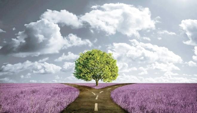 Một người phải đi con đường của mình, bản thân không sai nhưng quan trọng là đi như thế nào?