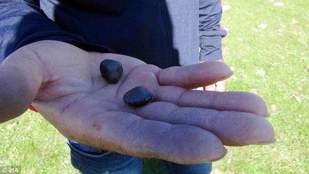"""Hai viên """"đá trời"""" màu đen quý hiếm thuộc thiên thạch rơi xuống làng Thổ Nhĩ Kỳ đêm 2.9."""