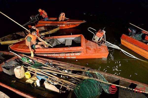 Nhằm tránh ảnh hưởng đến cuộc sống của người dân, công việc thu gom và xử lý cá chết chủ yếu diễn ra vào đêm khuya.