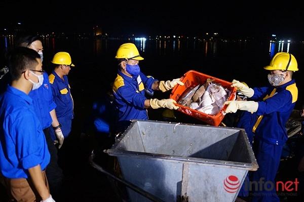 Theo Chủ tịch UBND TP Hà Nội Nguyễn Đức Chung, trong 3 ngày vừa qua (từ 2-4/10), số lượng cá chết tại Hồ Tây đã lên tới 200 tấn. Toàn bộ số cá chết trên đều được mang đi chôn lấp theo tiêu chuẩn tại Trung tâm xử lý rác thải Nam Sơn.