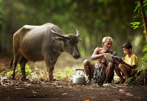 20150327173530-nhung-hinh-anh-cu-ngo-la-viet-nam-traveltimes-22