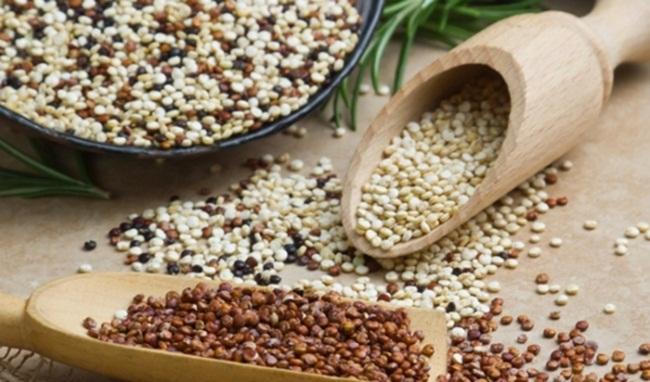 Diêm mạch là loại hạt có hàm lượng protein cao nhất trong nhóm họ gạo. (ảnh:internet)