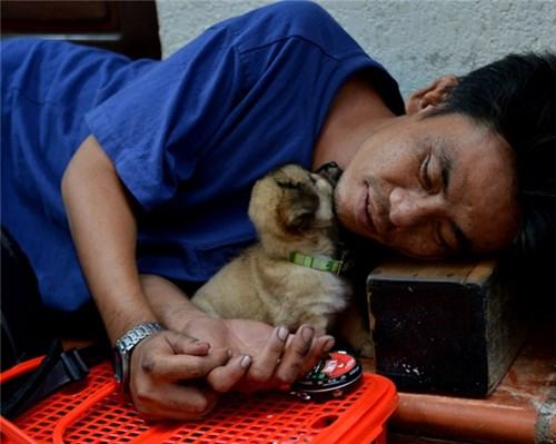 """""""Đôi bạn"""" dựa vào nhau mà sống giữa Sài Gòn."""