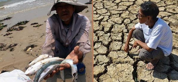 Cá chết, hạn mặn: Việt Nam khó chồng lên khó.