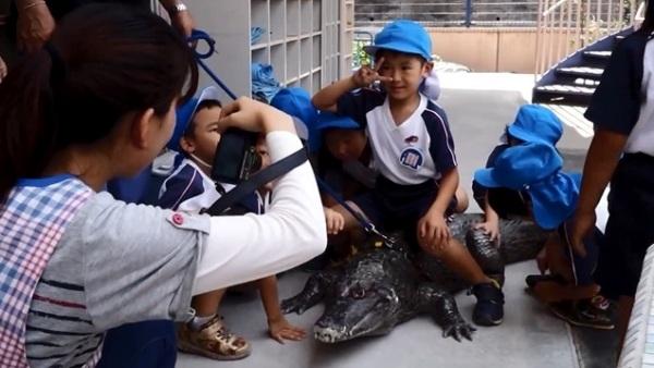 Ông Nobumitsu còn dẫn chú cá sấu tới trường mẫu giáo gần nhà để các em nhỏ có thể chơi đùa hoặc chụp ảnh. (Ảnh: Internet)