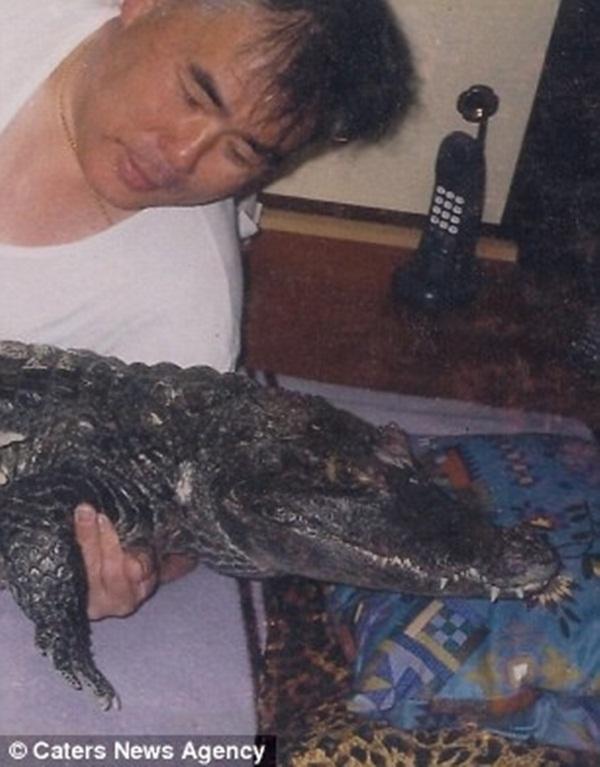 34 năm trước ông Nobumitsu Murabayashi đã mua một chú cá sấu con tại hội chợ động vật ngoại quốc. (Ảnh: Internet)