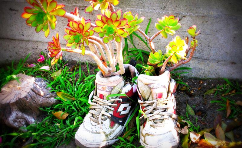 Một đôi giày, dù được sản xuất ở đâu, có thể đồng hành trên suốt quãng đường đã là điều hiếm có. Thế nên, duyên phận rất quan trọng. (Ảnh: Bland)