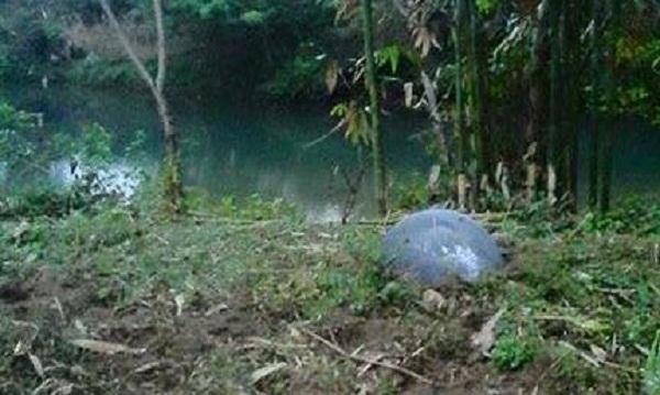 Người dân phát hiện vật thể lạ nằm gần bờ suối