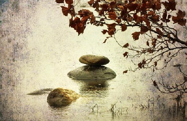 Lựa chọn sống có mục đích để cuộc đời không trôi qua vô nghĩa.2