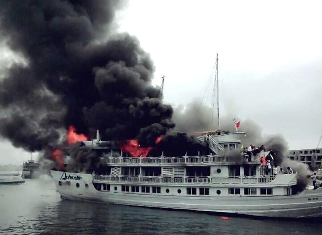 Theo lời khai thuyền trưởng, tàu QN 6299 gặp hỏa hoạn khi đang di chuyển từ vịnh về cảng. Lửa và khói đen bao trùm phía đuôi tàu, khiến hàng chục du khách hoảng loạn.