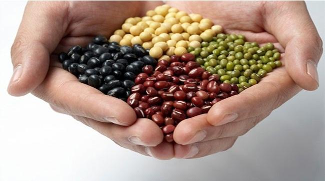 Các loại hạt sẽ cung cấp cho cơ thể nhiều chất béo có lợi, protein và chất xơ.(ảnh: internet)