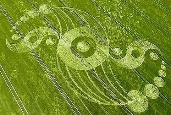 Vòng tròn kỳ thú xuất hiện trên cánh đồng lúa mì ở Wiltshire, Anh.