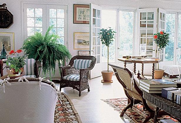 Cây trong phòng khách còn giúp thanh lọc không khí cho ngôi nhà. (Ảnh: Internet)