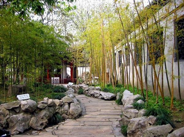 Nên trồng cây cau hoặc trúc trước nhà để đem đến may mắn cho gia chủ. (Ảnh: Internet)