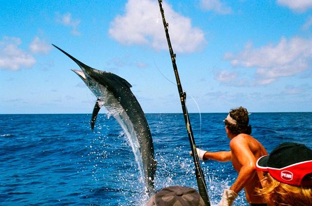 Nếu trong giấc mơ bạn thấy mình đang bắt cá hoặc câu cá báo hiệu bạn sẽ được kế thừa một khối tài sản khổng lồ. (Ảnh: Internet)