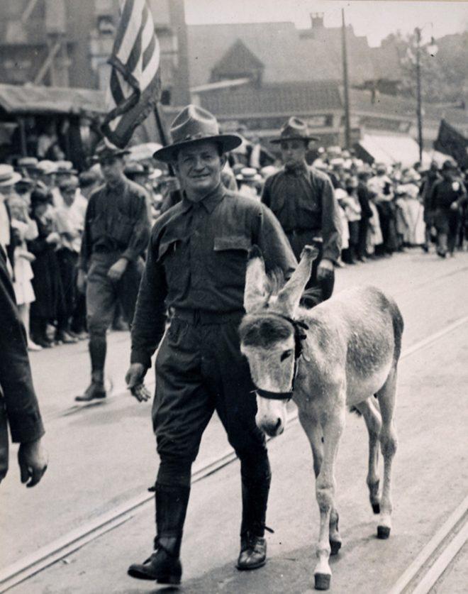 Những con vật nổi tiếng trong quân đội Mỹ Thế chiến I.4