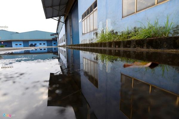 Từ năm 2009 đến 2011, nhà máy làm ăn ổn định, thu nhập của công nhân được cải thiện. Đến năm 2012, Vinaxuki lần đầu tiên bị lỗ 45 tỷ đồng, không có tiền trả nợ vốn vay cho các ngân hàng.