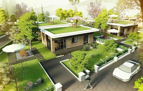 Những lưu ý khi trồng cây phía trước nhà. (Ảnh: Internet)