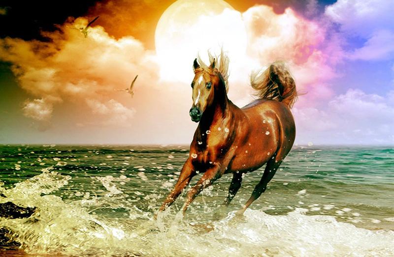 Ngựa bị ruồi chích rồi mới có thể chạy nhanh hơn, bất kể nó là con ngựa lười biếng ra sao. (Ảnh: Internet)