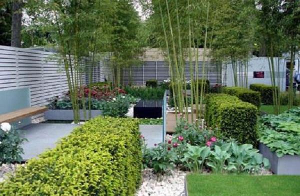 Chọn loại cây trồng nên đảm bảo hài hòa Âm Dương với màu sắc ngôi nhà. (Ảnh: Internet)
