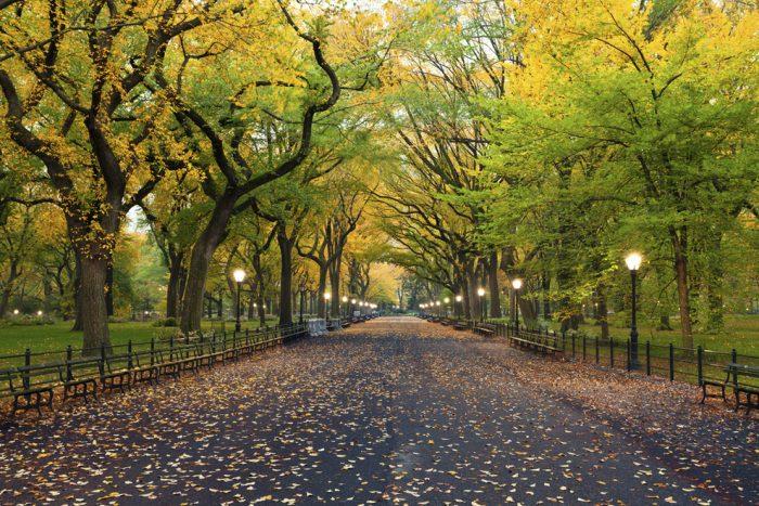 13 con đường đẹp như thơ khiến người ta mê đắm.8