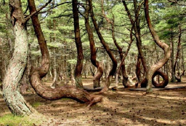 Những hiện tượng thiên nhiên kỳ bí xuất hiện trên thế giới - H6