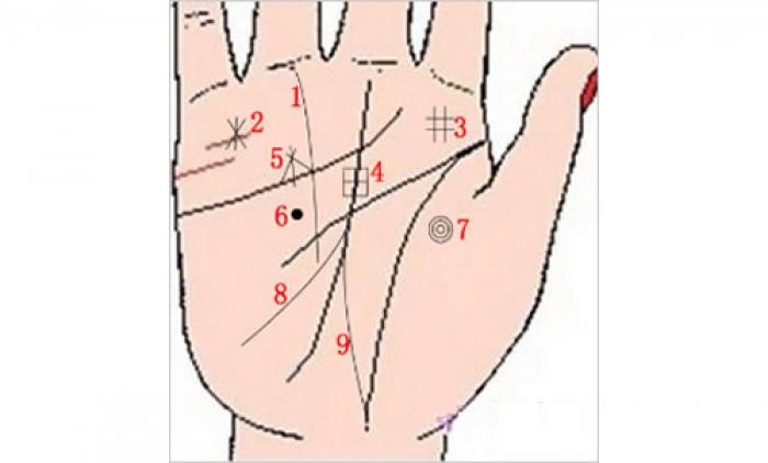 chỉ tay có hình ngôi sao năm cánh