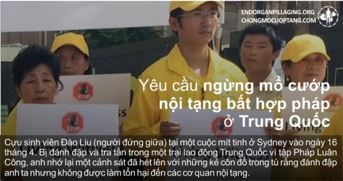 Người dân Úc kêu gọi chính phủ tham gia chấm dứt mổ tạng phi pháp ở Trung Quốc.1