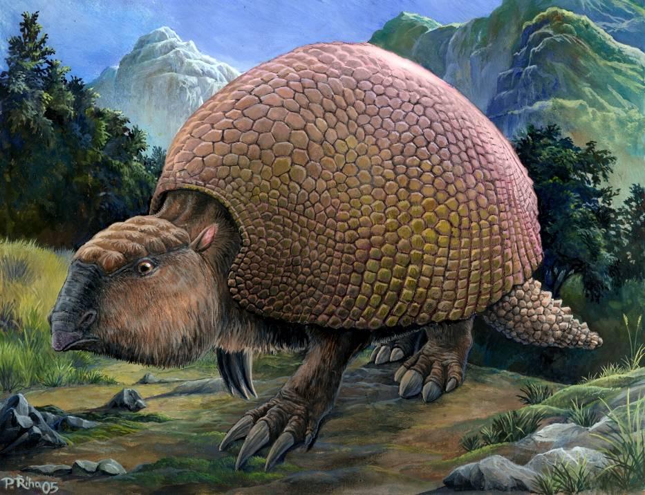 Glyptodon_(Riha2000)