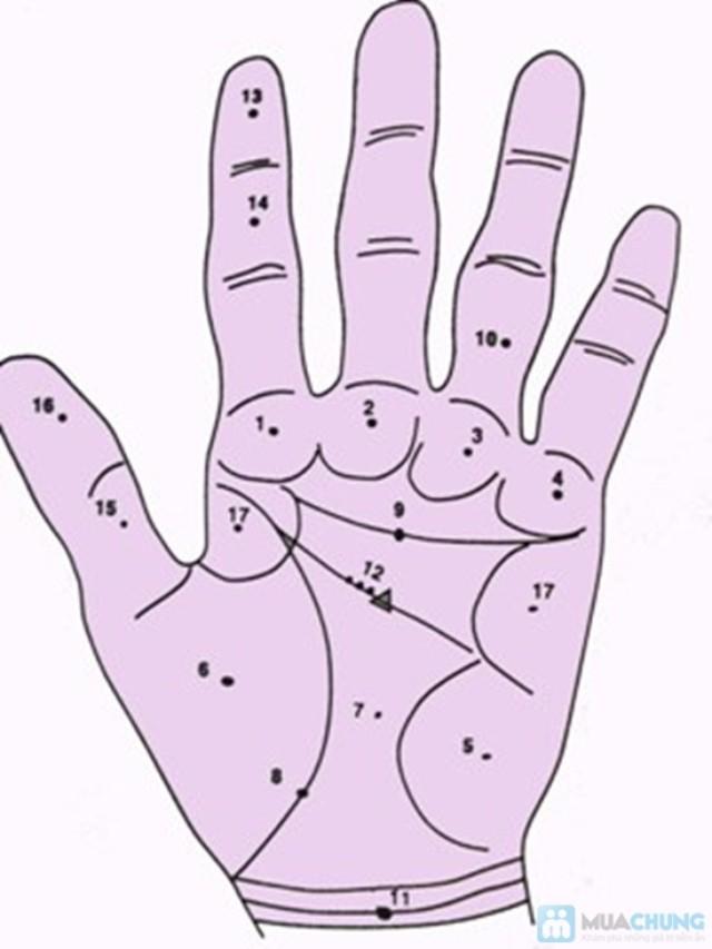 Vị trí các nốt ruồi trong lòng bàn tay