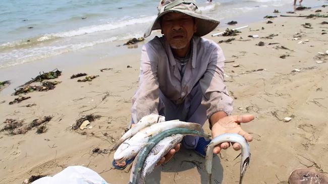 Nhiều thế hệ ngư dân bị ảnh hưởng bởi sự cố môi trường do Formosa gây ra lần này.