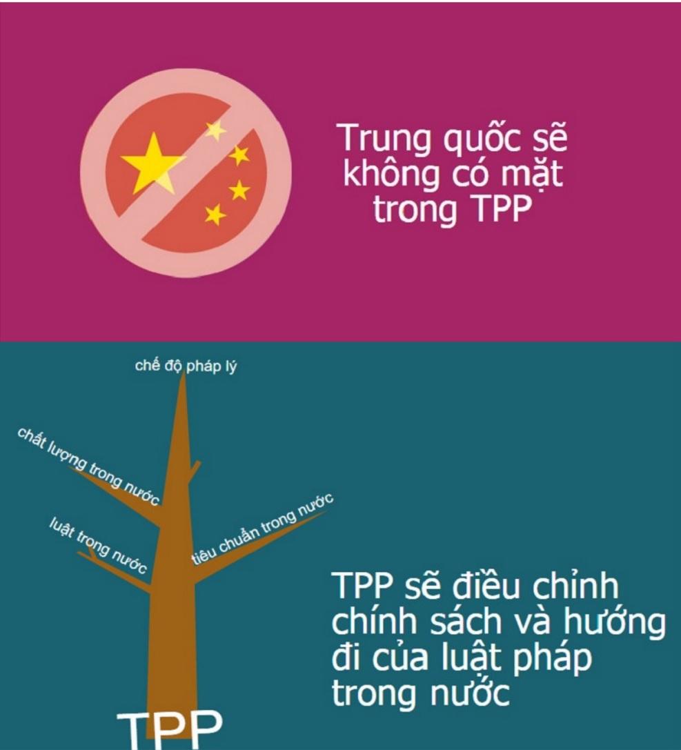 TPP 4