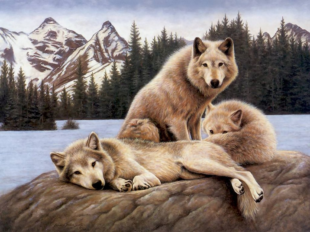 Wolfs-alpha-and-omega-22891728-1024-768