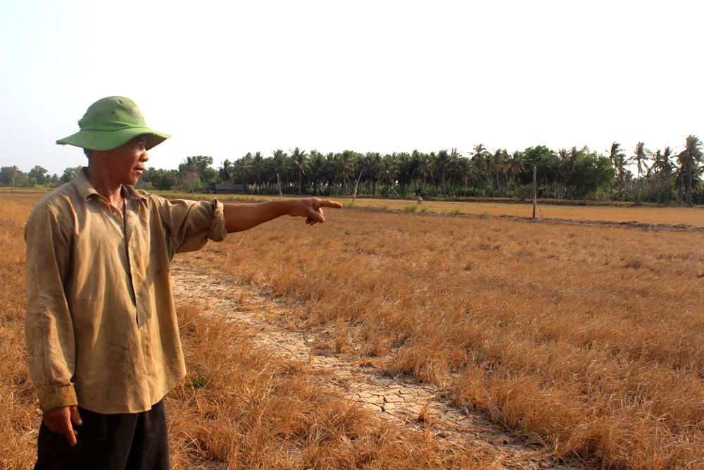 Cánh đồng bị nứt toác do hạn hán ở đồng bằng sông Cửu Long.